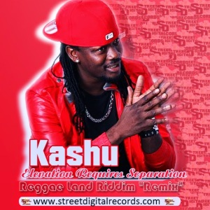 KASHU CONTINUES TO ELEVATE