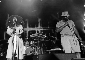 Erykah Badu and The Roots Live at Roots Picnic 2015, Photo by Mel D. Cole