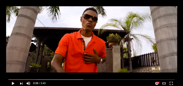 Wayne Wonder Video